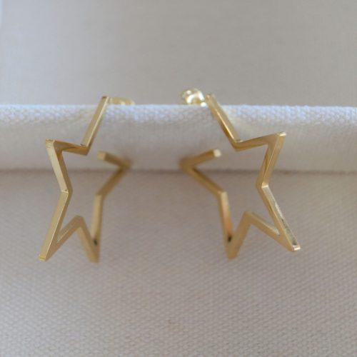 Pendientes-Aro-Estrella-LS2143(2)-P